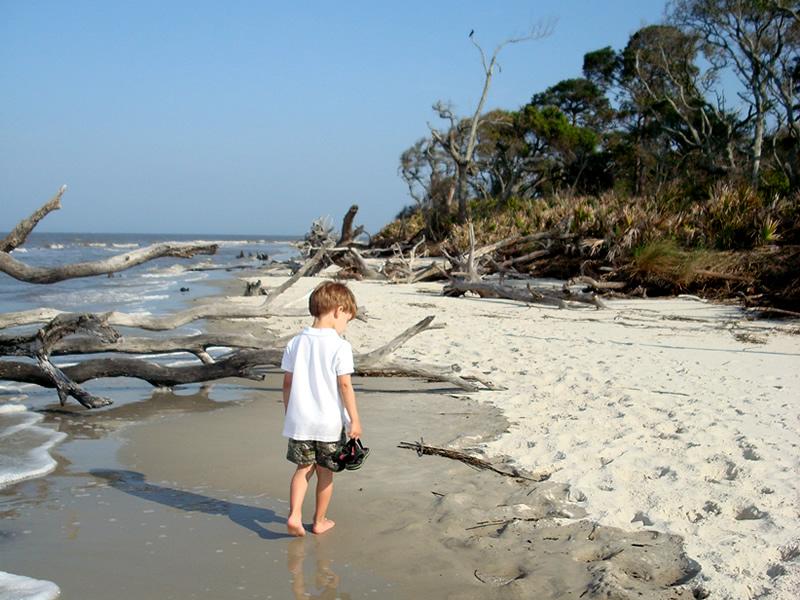 Jekyll Island Driftwood Beach Tides