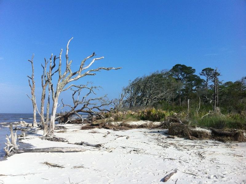 Jekyll Island Georgia